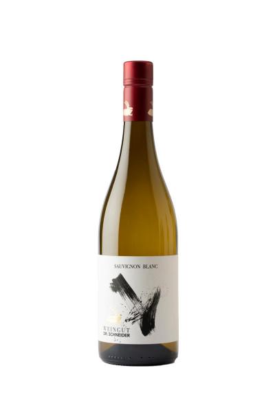 Sauvignon Blanc trocken 2019 - Rote Kapsel - Weingut Dr. Schneider