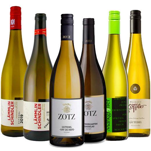 GUTEDEL Champs II Weinpaket inkl. Online Weinprobe (On Demand)