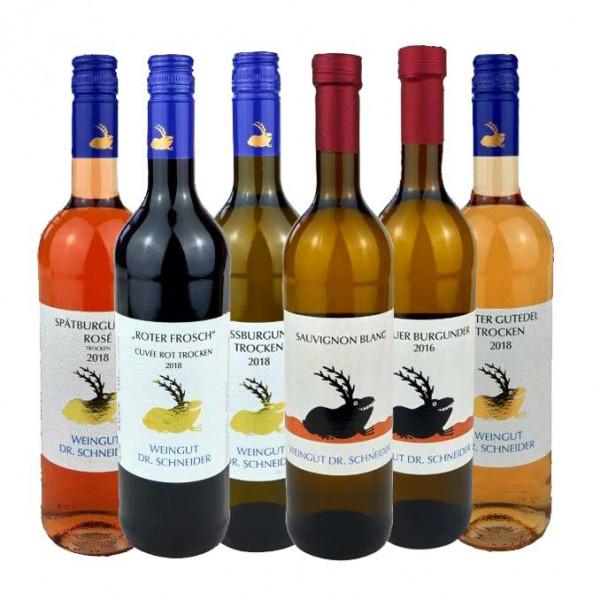 5 plus 1 Wein Kennenlernpaket - Weingut Dr. Schneider