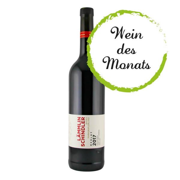 2017 Mauchen Merlot, trocken VDP.ORTSWEIN - WEIN des MONATS 01/2021 Lämmlin-Schindler - Biowein