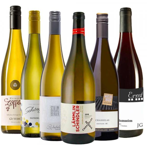 """""""Gutedel Champs III"""" - Weinpaket zur Online Weinprobe ON DEMAND"""