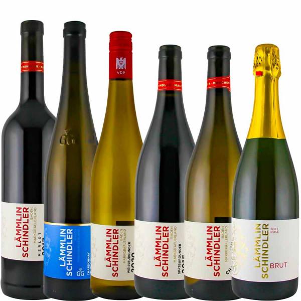 Guts-Favoriten Paket - Weingut Lämmlin-Schindler